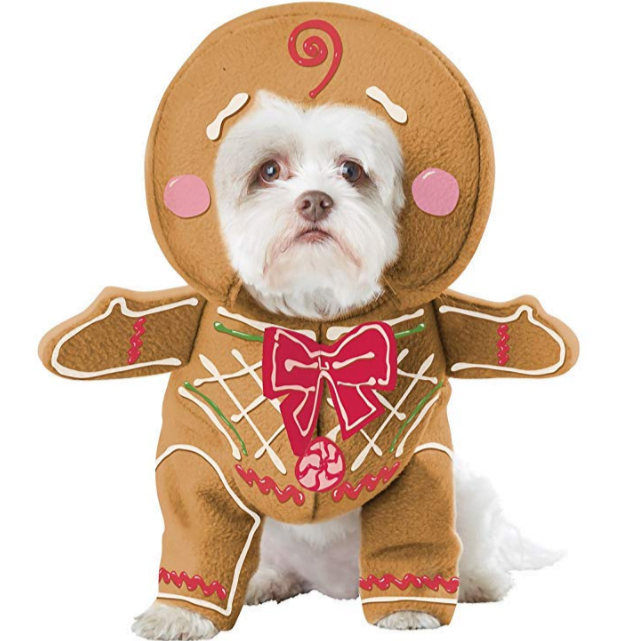 Halloween Costumes for Dogs - Dog dressed as gingerbread man