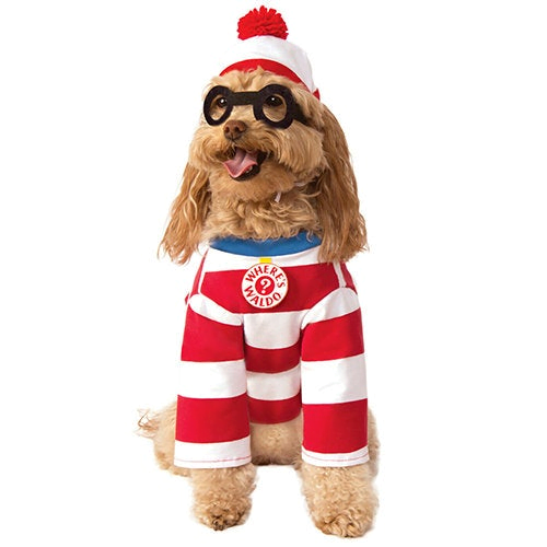 Dog dressed in waldo inspired stripped shirt and hat