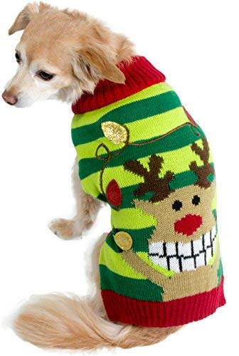 Red, yellow and green stripe sweater with a cartoon picture of a reindeer on the back.  Mixed breed dog.