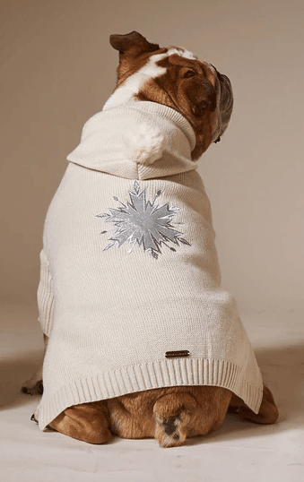 White and silver snowflake dog Christmas Sweater on a bulldog