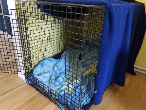 Crate Training A Puppy  - Crate with blanket covering it