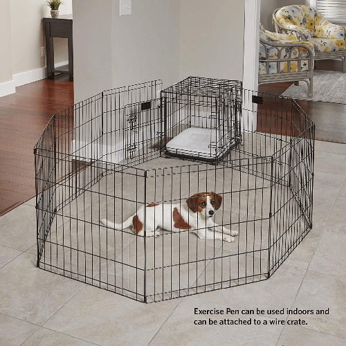 How to Crate Train a Puppy: 10 Mistakes to Avoid - Playpen