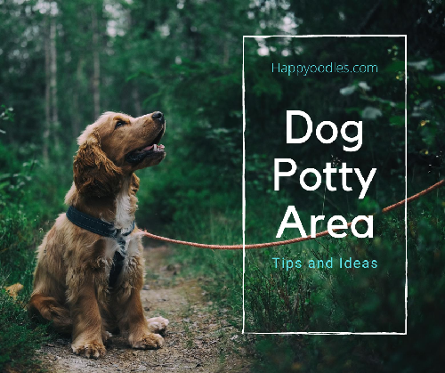 Dog Potty Area Guide