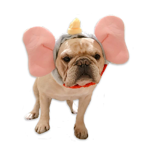 Hilarious Halloween Costumes for Dogs - Updated for 2020 0 Elephant ears