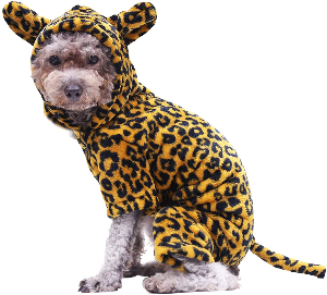Hilarious Halloween Costumes for Dogs - Updated for 2020 - Leopard costume for dogs