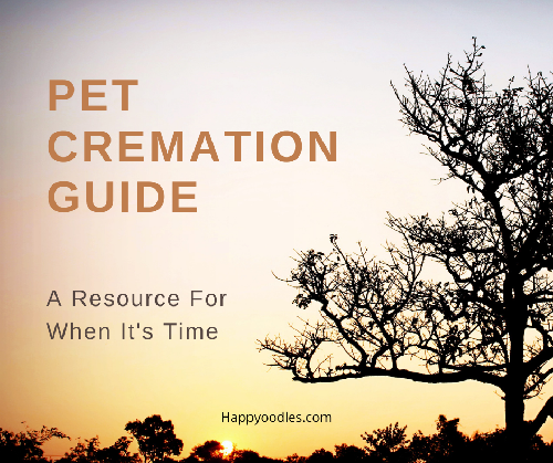 Pet Cremation Guide: A Resource for When It's Time