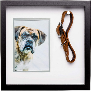 Shadow box for dog leash and picture