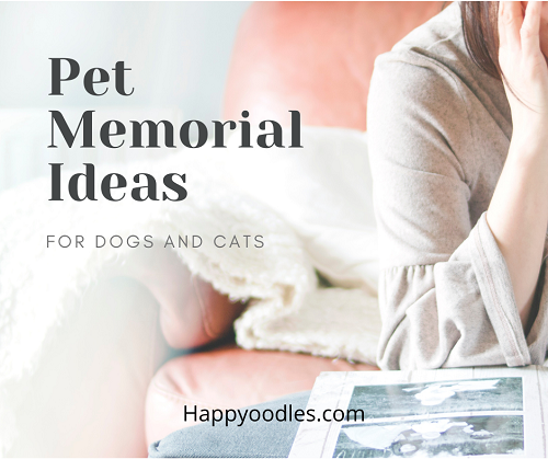 Pet Memorial Ideas For Dogs And Cats - updated 02/05/2021