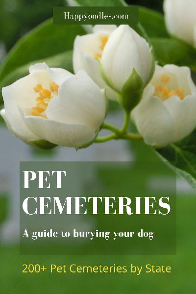 Pet Cemeteries: A practical guide to burying your dog - Pin